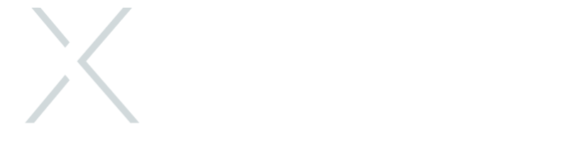Logo XLabs Security