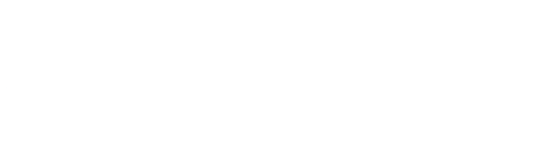 Logo Value Bridge