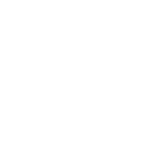 Logo Future Hacker